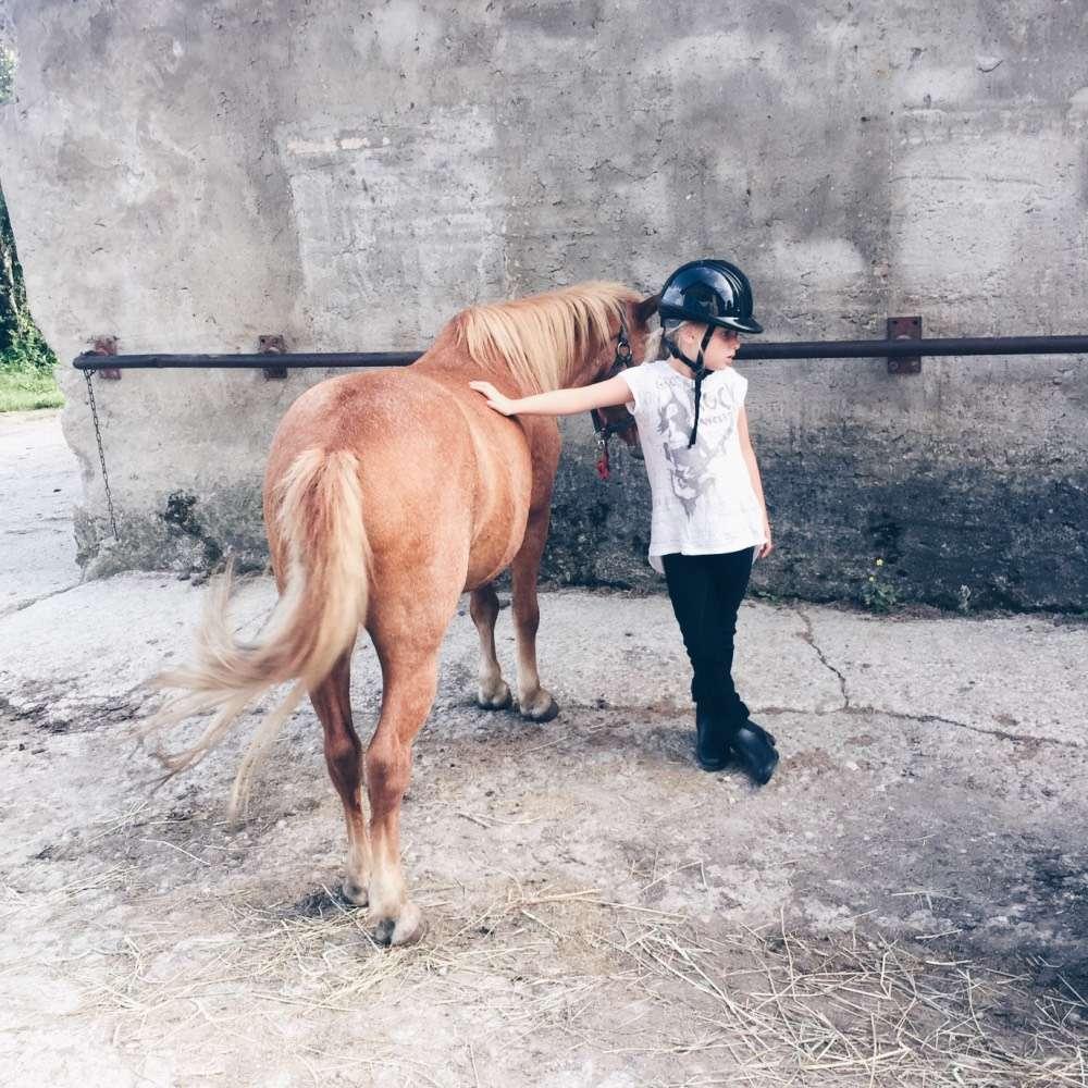 mamablog mamawahnsinnhochdrei Reitstall regeln no-go don't Pferde 12