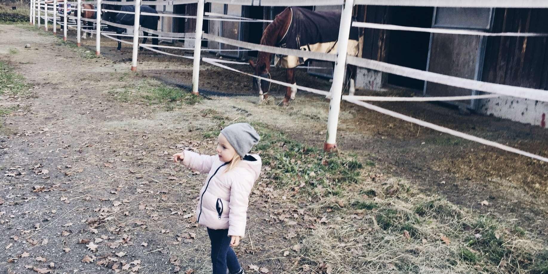mamablog Trotzphase Ponyhof