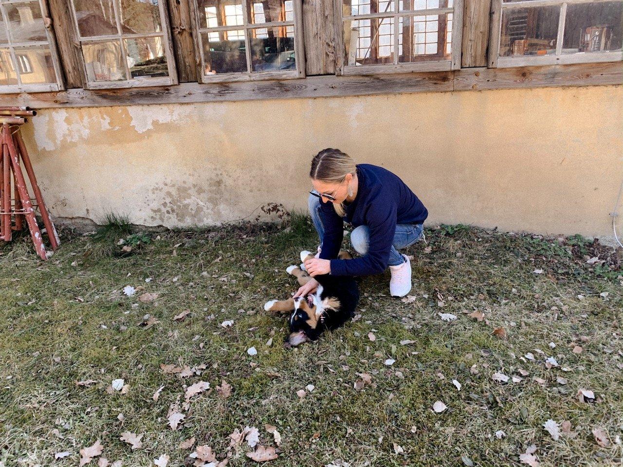 Hund und Kind was muss beachtet werden? MamaWahnsinn