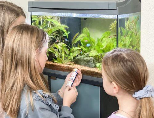 Aquarium für Kinder: Kinder Forscher auf Entdeckungsreise im Forscher Club