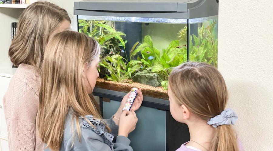 Ein Aquarium für Kinder, bei Tetra gib es einen Forscher Club für die Kleinen. Die drei Mädchen testen hier den PH-Wert des Wassers.