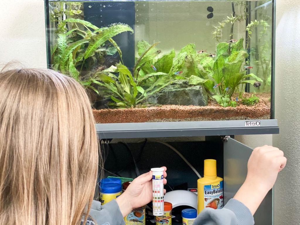 Beim Kleinen Forscher Club gibt es alle Infos über das Aquarium für Kinder. Die Kinder lernen spielerisch.